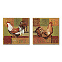 Taulupohjat taide Animal Gourmet Rooster by NBL Studio Set 2