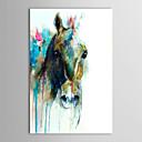 Pintado a mano la pintura al óleo del extracto del animal Cabeza de caballo con el marco de estirado listo para colgar