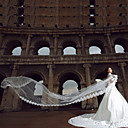 Special Offer New Brides Veil 5 Meters Long Exterior Elegant Veil Wedding Accessories Five Meters