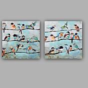 手描きの 抽象画 動物 四角形,Modern クラシック 2枚 キャンバス ハング塗装油絵 For ホームデコレーション