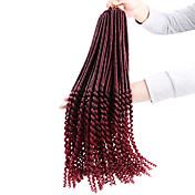 Croché Las trenzas rizadas Extensiones de cabello Las trenzas de pelo