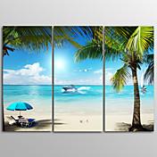キャンバスプリント 風景 リアリズム,3枚 キャンバス 横長 版画 壁の装飾 For ホームデコレーション