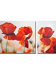 ručně malované květinové olej s rozprostřeným rámem - sada 2