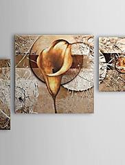 Ručně malované Květinový/Botanický motiv Jakýkoliv Shape,Moderní Tři panely Hang-malované olejomalba For Home dekorace
