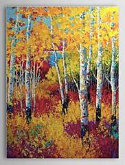 ručně malované olejomalba krajina žluté lesní 1303-ls0260