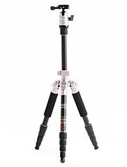 デジタル一眼レフカメラ用のFotopro X4i-E屋外トラベルアルミニウム - マグネシウム合金の伸縮三脚(ゴールド)