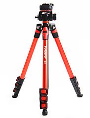 カメラビデオカメラデジタル一眼レフDV(赤)Fotopro S3のアルミニウム三脚+ 1月4日ボールヘッド