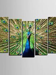 e-HOME® plátně umění páv dekorativní malba set 5