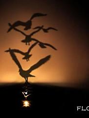 群れシャドウ投影常夜灯創造的主導のベッドサイドランプ