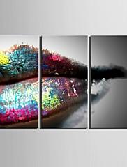 e-HOME® plátně umělecké rty dekorace malování set of 3