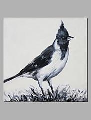 手描きの 動物 アーティスティック 1枚 キャンバス ハング塗装油絵 For ホームデコレーション
