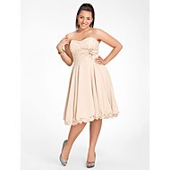 Homecoming Sweet 16/Cocktail Party/Homecoming Dress - Champagne Plus Sizes A-line/Princess Sweetheart/Strapless Knee-length Chiffon