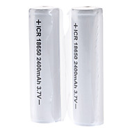 GTQQ ICR Protected 2400mAh 3.7V 18650 Rechargeable Battery (2-Pack)