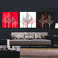 Stretched Canvas Art Botanical Lucky Trees Set of 3