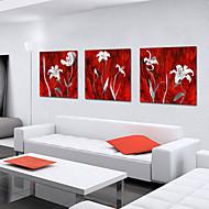 켄버스 예술 식물 백색 꽃잎 3 개 세트