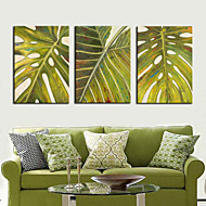 Strukket lerret Art Botanisk Green Leaf Set of 3