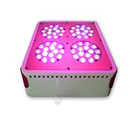 Led Grow Light     Led Plant  Light      Hydroponic  Led  Lights     led  Hydroponics  Lighting