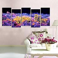 Strukket lerretet kunst Butterflies Are flagrer fra blomst til blomst.  Sett av fem