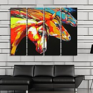 Stretched Canvas Art  For Abstract The Horse Decoration  Set of 4