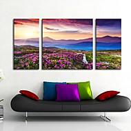 3のキャンバス地アート山の風景セット