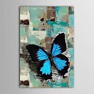 iarts®hand gemalte Ölgemälde abstrakten Tier bule Schmetterling mit gestreckten Rahmen