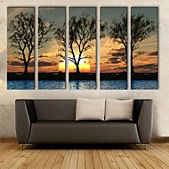 Stretched Canvas Art The Sunset Under The Shadows Of  Decorative Painting  Set of 5