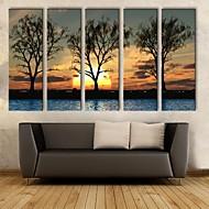 opgespannen doek zijt de zonsondergang in de schaduw van decoratieve schilderkunst set van 5