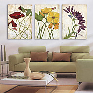 Stretched Canvas Art Floral Dancing Flower Set of 3