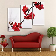E-HOME® Stretched Canvas Art Red Plum Blossom Decoration Painting  Set of 3