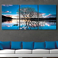 e-home® lona esticada és o reflexo do conjunto pintura árvores decoração de 3