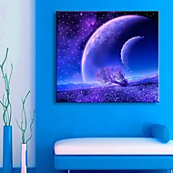 E-HOME® Stretched LED Canvas Print Art Starry Sky Flash Effect LED Flashing Optical Fiber Print
