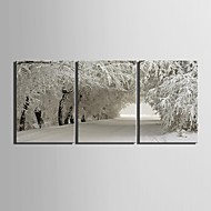E-HOME® Stretched Canvas Art Snow Scene Decoration Painting Set of 3