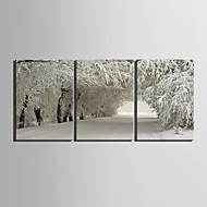 e-home® lona esticada arte cena de neve set decoração pintura de 3