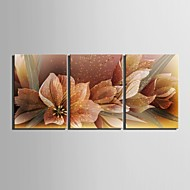 e-home® strukket lerret kunst blomsterdekorasjoner maleri sett med 3