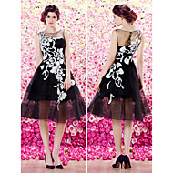 Homecoming TS Couture Cocktail Party Dress - A-line Scoop Knee-length Organza