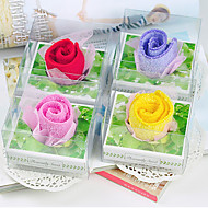The Story of The Towel Rose (Set of 2)