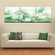 VISUAL STAR®Beautiful Water Lily Flowers Triptych Three Panels High Quality Canvas Ready to Hang
