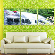 Prints Poster Landscape Tree Of life Oil Paintings Print On Canvas  3pcs/set (Without Frame)