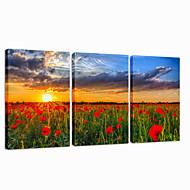 visuaalinen star®garden Canvastaulu moderni auringonnousu triptyykki seinälle valmis roikkua