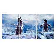 VISUAL STAR®Cute Canvas Printing for Kid Room Decor Animal Decoration Picture Canvas set of 3