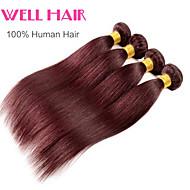 "3pcs/lot ""14-24""Inch Brazilian Virgin Hair Straight Human Hair 99j Color"