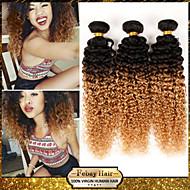 """1pcs / lot 10 """"-24"""" 100g / piece brasilianisches reines Haar verworrene lockige 7a Grade zwei Tönen 1b / 27 ombre remy Menschenhaar Webart"""