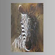 Asetelma / Eläin / Moderni Canvas Tulosta One Panel Valmis Hang , Pysty