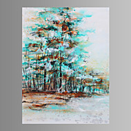 Wall Art Canvas Print Ready To Hang 75*100cm
