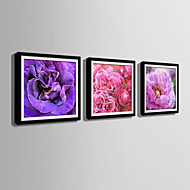 Kwiatowy/Roślinny Oprawione płótno / Zestaw w oprawie Wall Art,PVC (polichlorek winylu) Czarny Zawiera podkładkę z ramą Wall Art