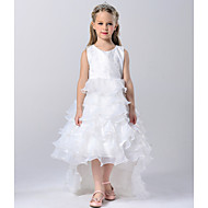 A-line Court Train Flower Girl Dress - Tulle / Polyester Sleeveless Jewel with