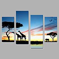Djur Canvastryck Fyra paneler Redo att hänga,Vertikal