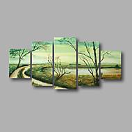 """allungato (pronto da appendere) pittura a olio dipinta a mano 60 moderna primavera foresta astratta """"x32"""" arte della parete della tela di"""