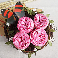 Six Pink Austin Roses/Box Preserved Fresh Flowers