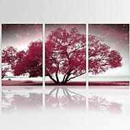 VISUAL STAR®Autumn Tree Wall Art for Home Decor Landscape Giclee Print on Canvas Ready to Hang